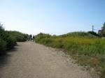 6d Path S path + 3 birders_L Johnson_5 2712_CR_IMG_7344