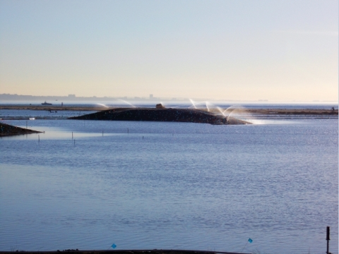 Boottoe Island looks like a surfacing whale (L. Plauzoles 10/28/12)