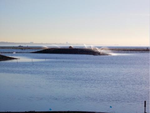 Boottoe Island looks like a surfacing whale (L. Plauzoles 10/28/12)