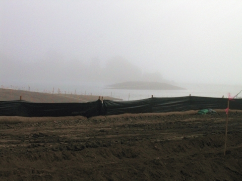 Foggy channel (L. Johnson 11/25/12)
