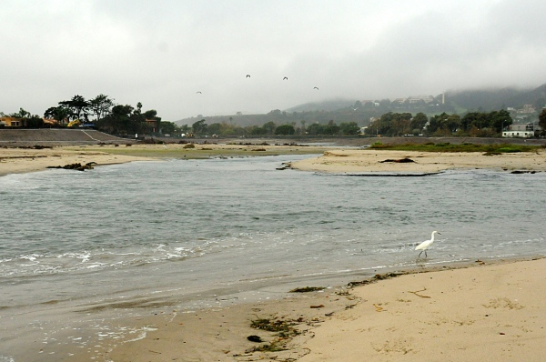 Rain causes Surfrider Beach to breach (J. Kenney 12/3/12)
