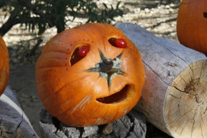 We few! We carven few! We group of gourds! (R. Seidner 11/3/12)