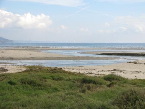 The beach breach (C. Almdale 12/23/12)