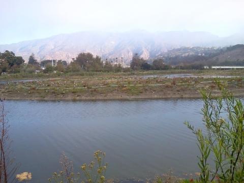 View across lagoon channel island to Malibu - Where did all the algae go? (L. Johnson 10/27/13)