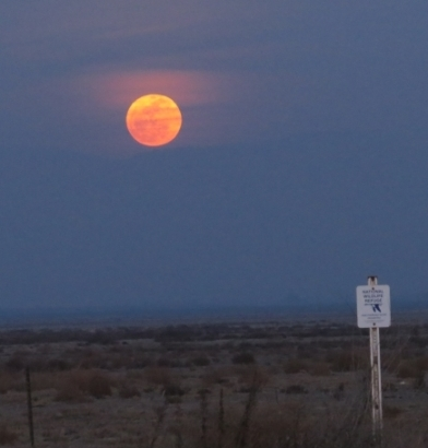 Refuge Moonrise (T. Hinnebusch 2/14/14)