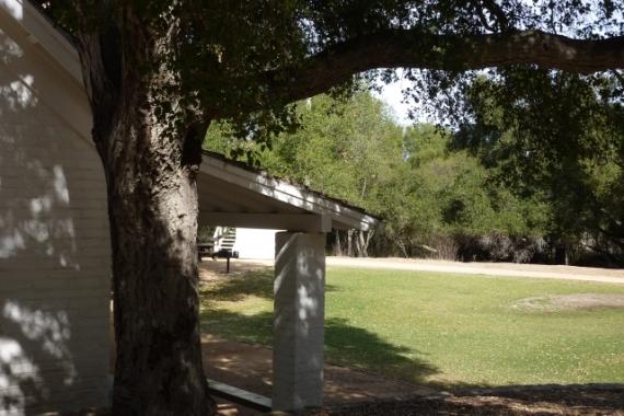 Trippet Ranch in Topanga S.P. (L. Plauzoles 2/20/14)