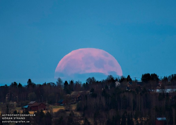 Full Strawberry Moon (Gören Strand 6/23/13 www.astrofotografen.se/ reproduced on apod.NASA.gov)