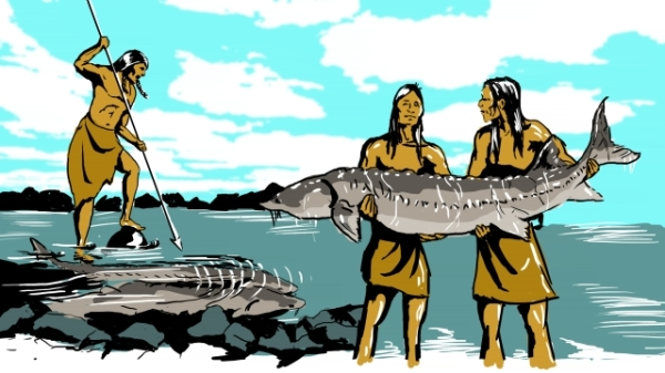 Sturgeon fishing in days of old (google images)