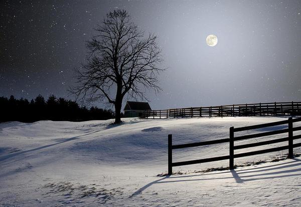Full Cold Moon(meetupstatic.com)