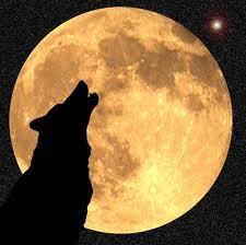 Wolf Moon (Paul Lungren - calendarDOTperfectduluthdayDOTcom