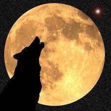 Wolf Moon (Paul Lungren - calendarDOTperfectduluthdayDOTcom