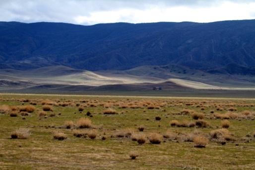 Carrizo blue mountains (Joyce Waterman 12/20/14)