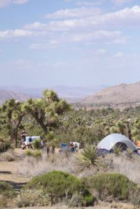 Black Rock campground - no wind, tents still in place (R. Seidner 5/2/15)