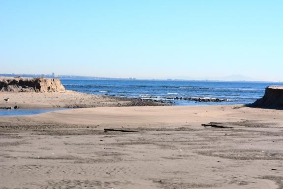 Beach breach (Grace Murayama 12-18-15)