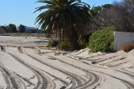 Beach grading between Adamson House and lagoon (Grace Murayama 12-18-15)