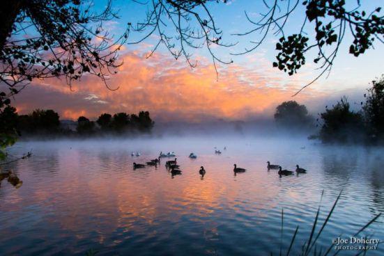 Dawn at the Sepulveda Wildlife Reserve (Joe Doherty)