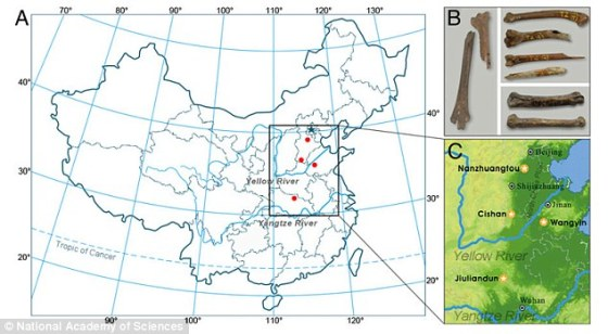 Location of chicken fossils, Yellow River area, China (Daily Mail)