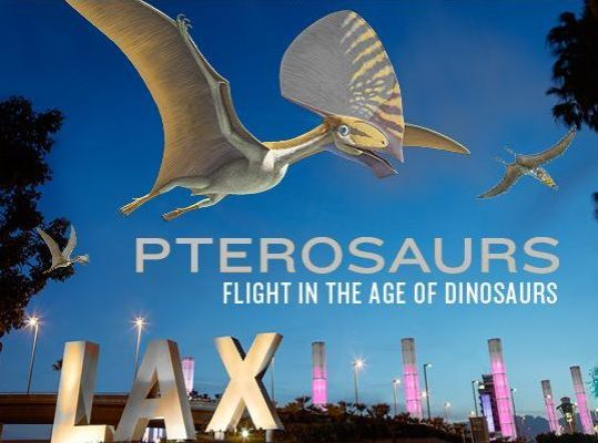 Pterosaurs at L.A. Co. Museum of Natural History