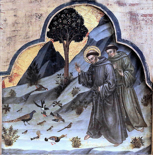 St. Francis Preaching to the Birds, Taddio di Bartolo, 1362-1422 (Jean Louis Mazieres - Flickriver)