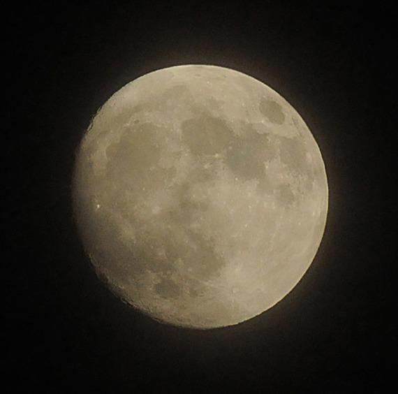 November 12 moon, approaching full supermoon status (Jim Kenney)