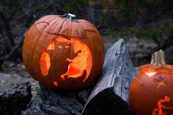 Owl in the pumpkin (Roxie Seider 10-29-16)